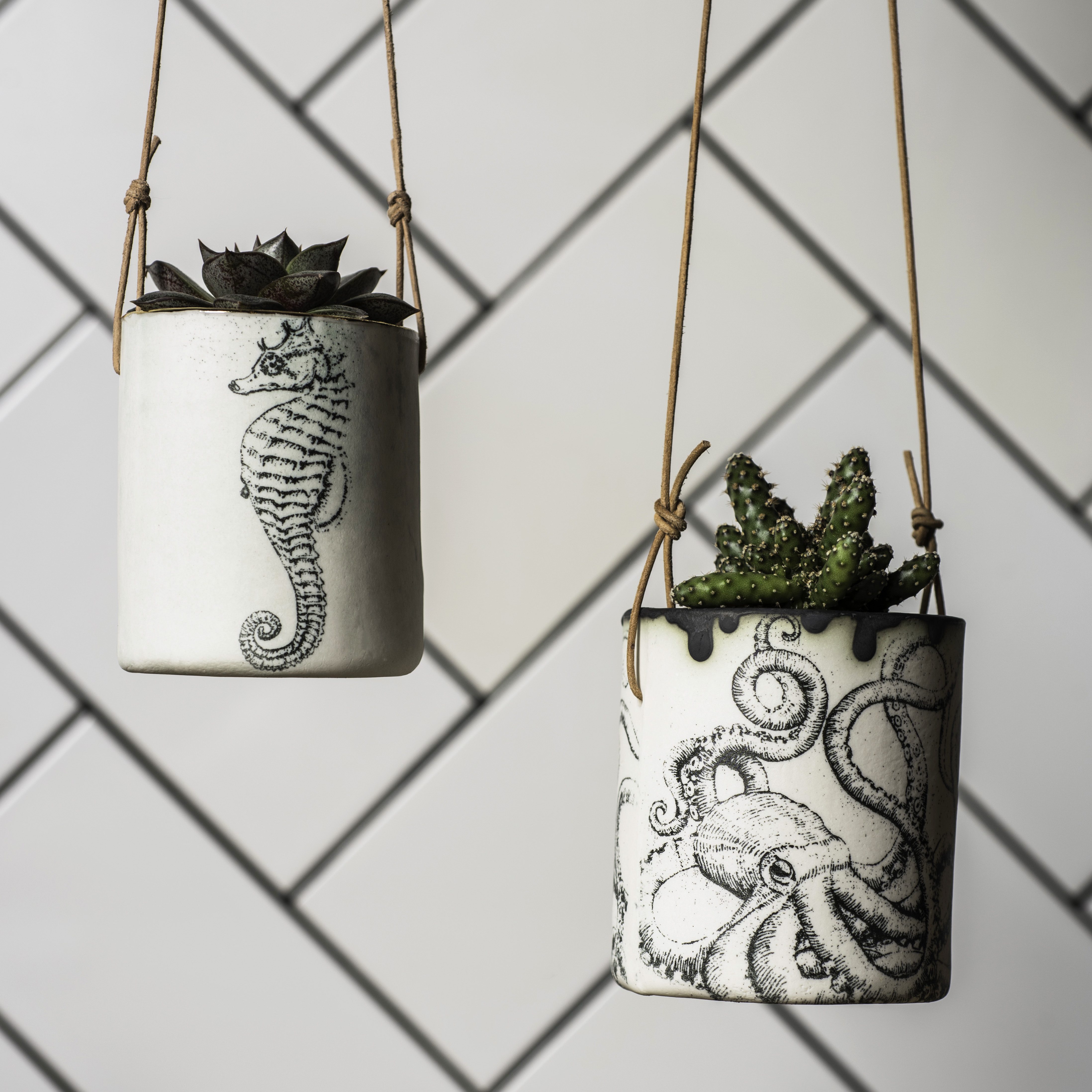Seahorse and octopus hanging planters