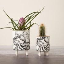 Planters_Katherine Lees Ceramics March 2020__200
