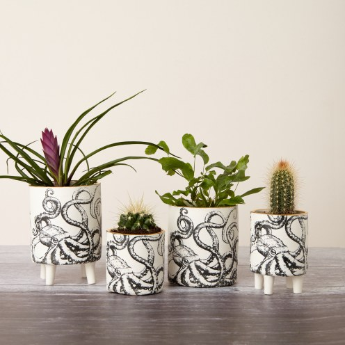 Screen printed octopus planters